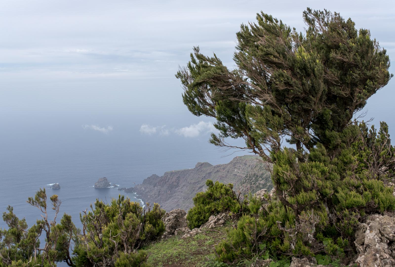 Blick auf die Roques de Salmor