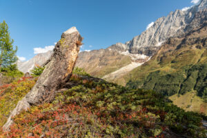 Die Wand der Bietschhornkette